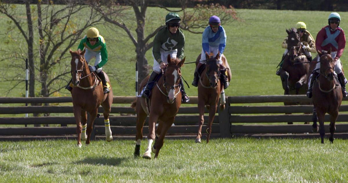 Horse Racing Not For The Faint Hearted Cbs News