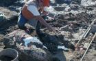 cms-excavation-9.jpg