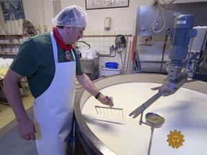 Gouda cheesemaking: A Dutch family tradition