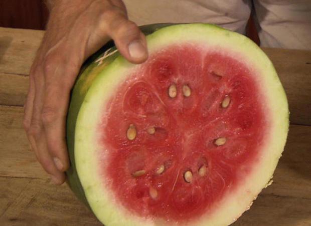 bradford-watermelon-split-promo.jpg