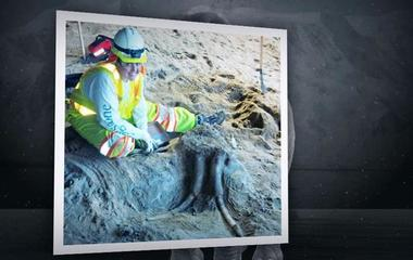 Subway construction project unearths prehistoric fossils in CA