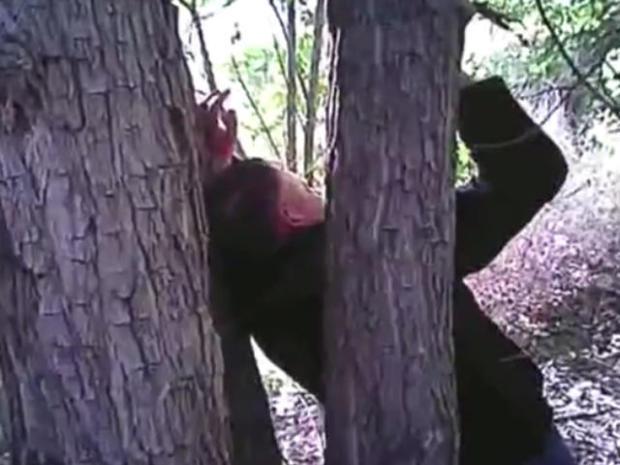 man-nailed-to-tree-albuquerque-0517.jpg