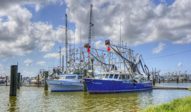 shrimp-boats.jpg