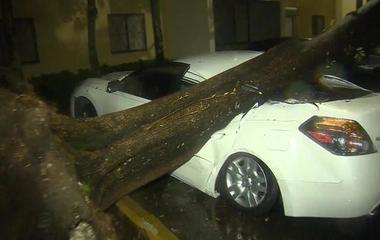 Special Report: Hurricane Irma bombards Florida
