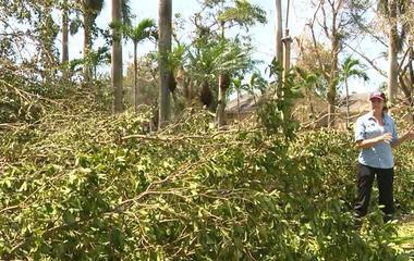 Irma causes widespread destruction across Florida