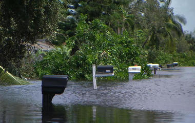 Floridians return to flooded homes