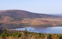 Nature: Maine