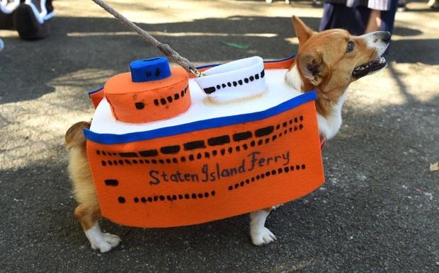 kissing booth dog costume halloween parade in new york city