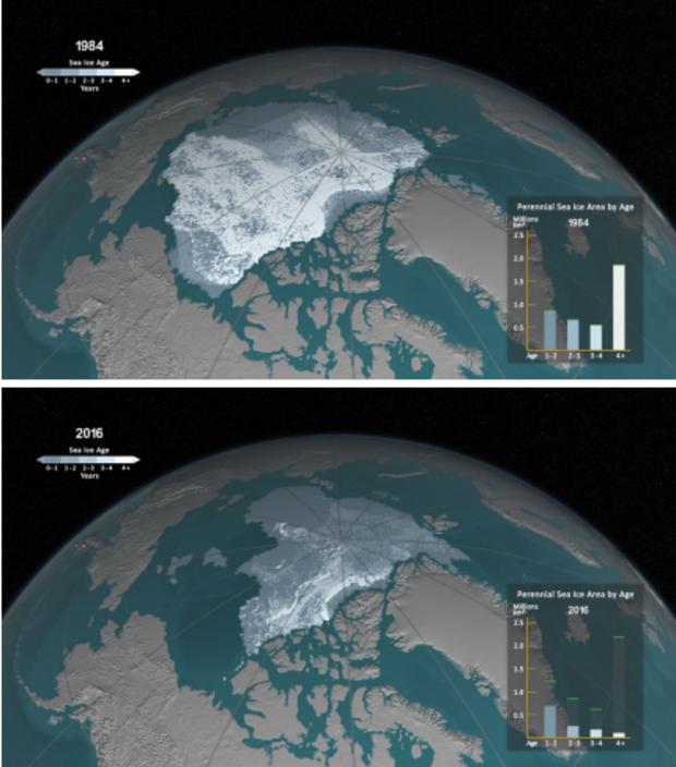 Arctic_sea_ice.png