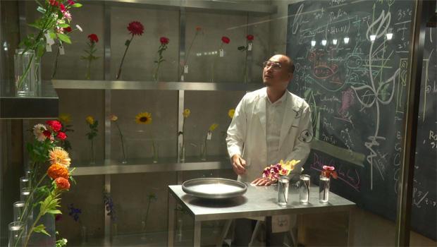 makoto-azuma-flower-experiments-620.jpg