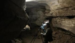 Filming bats
