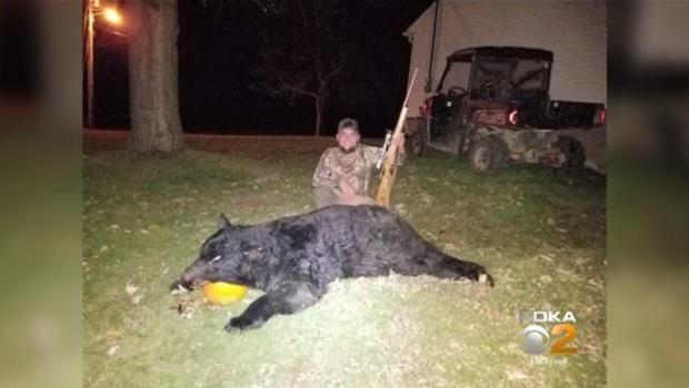 Hunter kills ginormous 600 pound bear in pennsylvania cbs news publicscrutiny Choice Image