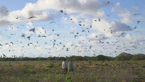 wake-atoll-national-wildlife-refuge-conor-knighton-john-gilardi-620.jpg