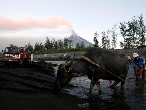 Resident and his water buffalo walk at river while Mayon volcano spews ash in Guniobatan