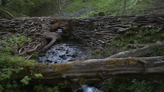 andy-goldsworthy-tree-across-stream-620.jpg