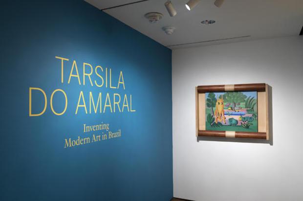 tarsila-gallery-installation-entrance.jpg