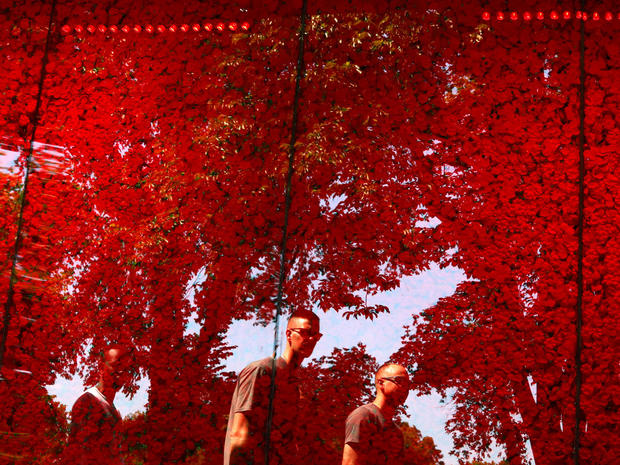 People are seen reflected on a temporary memorial made of over 600,000 poppies ahead of Memorial Day at the National Mall in Washington, U.S.