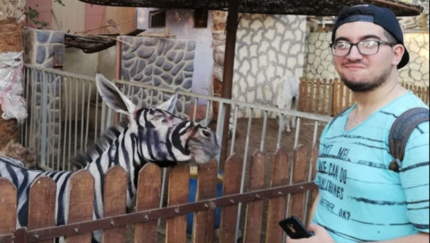 Egyptian zoo accused of passing off donkey as zebra