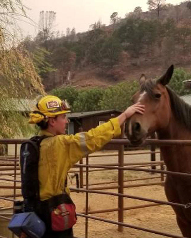 A firefighter pats a horse during an operation to battle a wildfire in an area near Mendocino National Forest, California