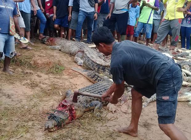 INDONESIA-ENVIRONMENT-WILDLIFE-CRIME