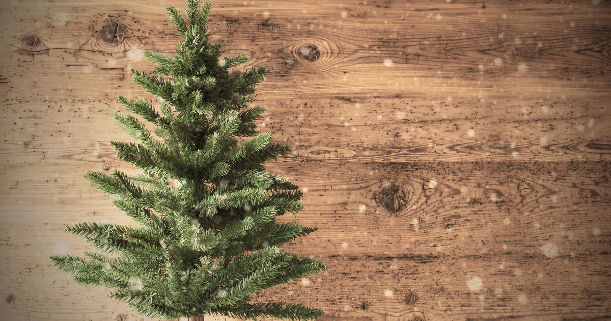 Amazon's Holiday Plans: Shipping Fresh 7-foot Christmas