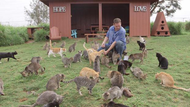 lanai-cat-sanctuary-executive-director-keoni-vaughn-the-crazy-cat-guy-620.jpg