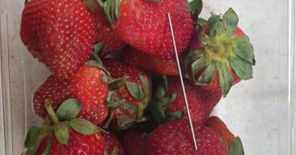 how to grow strawberries in australia