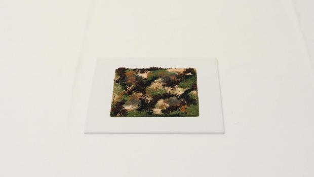 205-camouflage.jpg