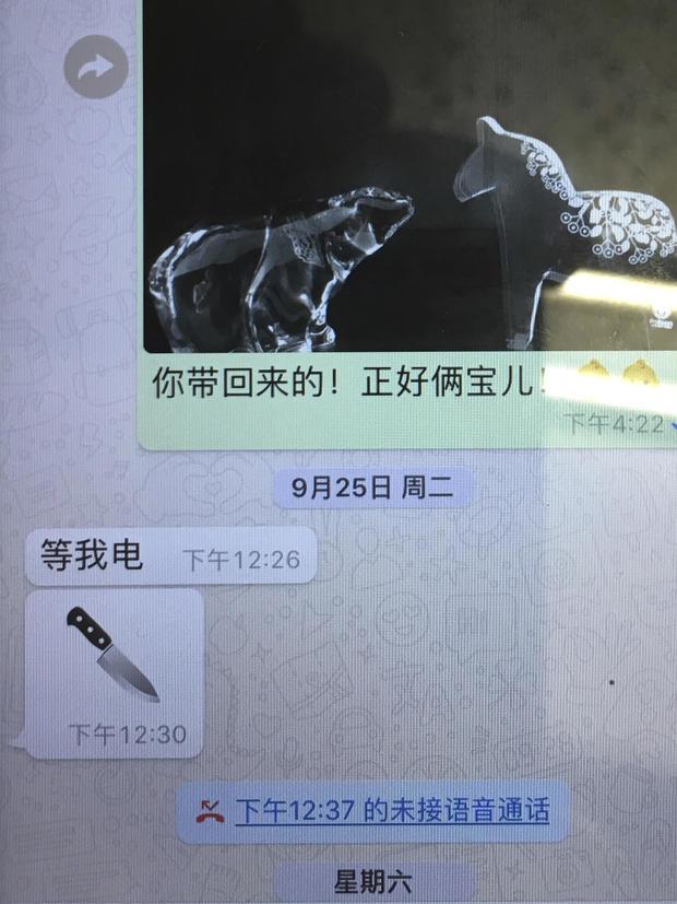 Meng Hongwei text message