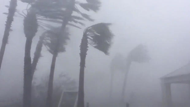Dramatic videos show what happened as Hurricane Michael made landfall