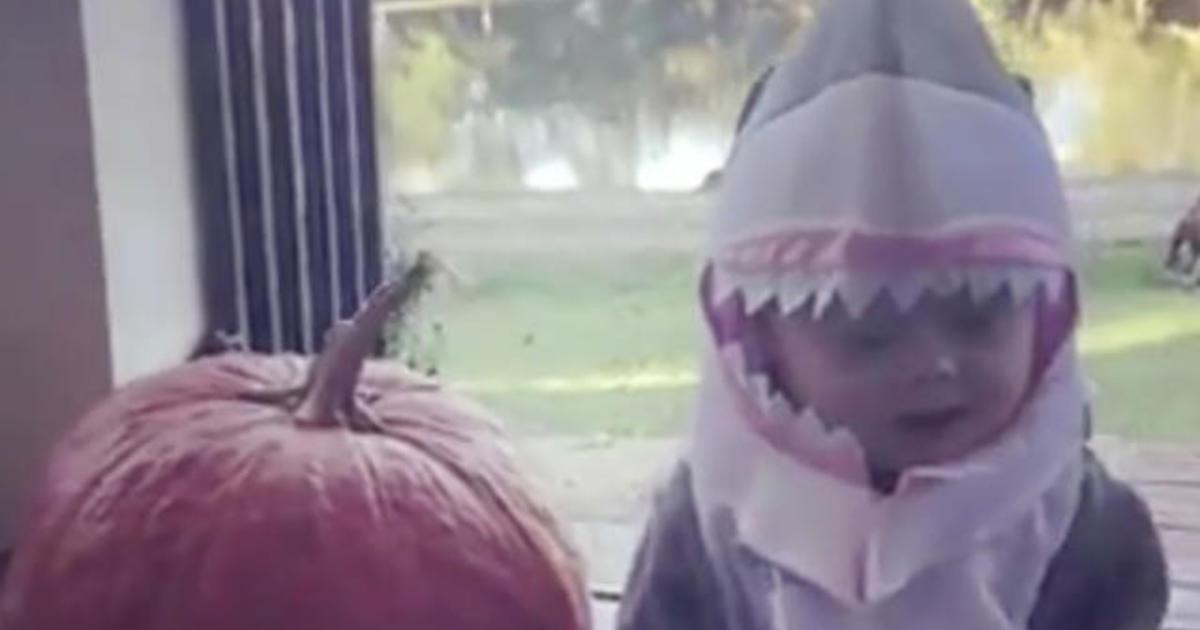 """Baby Shark"" swims onto Billboard Hot 100"
