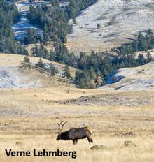 ns-slope-and-elk-verne-lehmberg-244.jpg