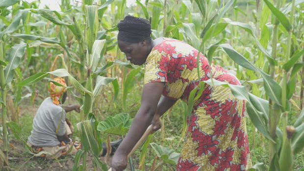musabyimana-marie-gaudence-is-a-member-of-a-womens-farming-cooperative-in-rural-rwanda-the-cooperative-is-funded-by-humanity-unified.jpg