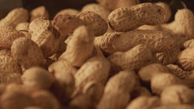 peanuts-with-shells-620.jpg