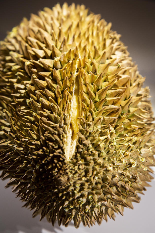 durian-1.jpg
