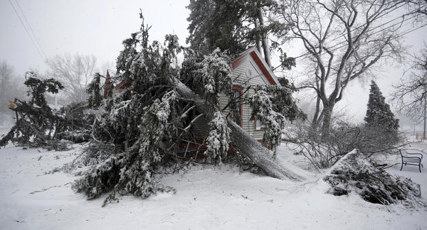 Trees snapped by high winds from a late winter storm packing hurricane-force winds and snow cover the Eugene Field house in Washington Park March 13, 2019, in Denver.