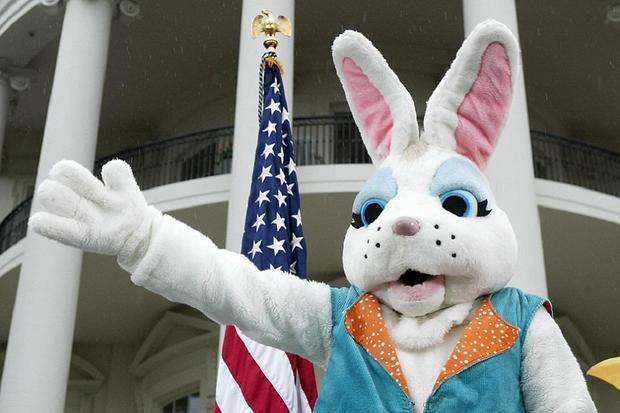 bad-bunnies_white-house