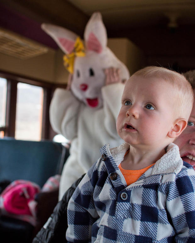 bad-bunny-elisabethfarnbach.jpg