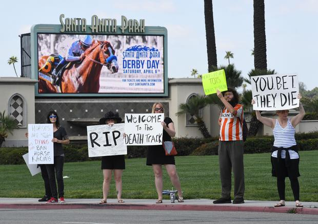 Santa Anita race track: More than 60 horses have died since 2018, investigation reveals