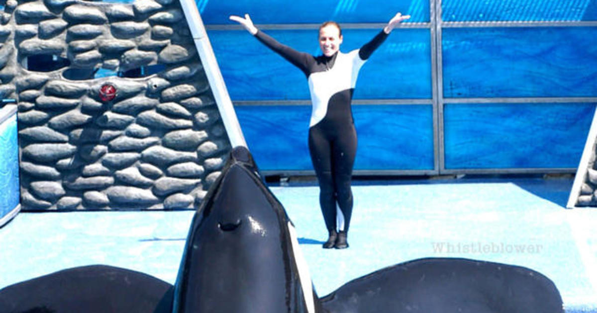 Former trainer blows the whistle on killer whale captivity at SeaWorld
