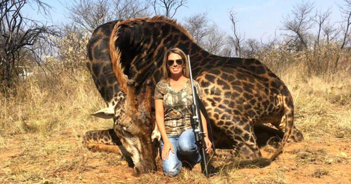 """There's no disrespect for the animal,"" says hunter in viral slain giraffe photo"