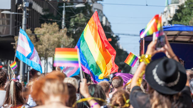 Crowd raising and holding rainbow gay flags during a Gay Pride. Trans flags can be seen as well in the background. The rainbow flag is one of the symbols of the LGBTQ community