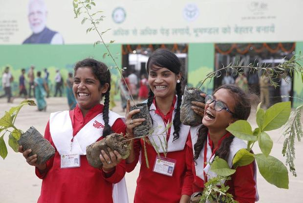 Climate change: India plants 220 million trees in a single day to save the planet