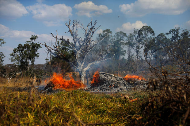 Pictures from the Amazon rainforest fires