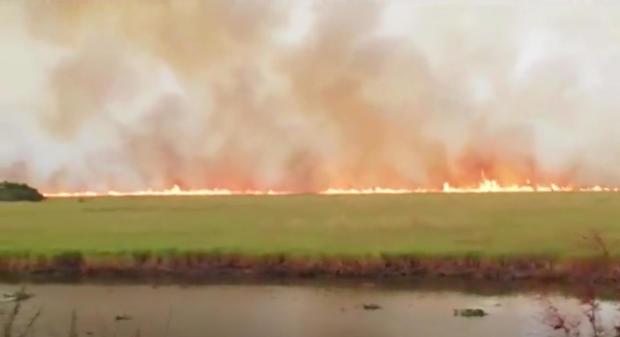 reuters-bolivia-fire.jpg