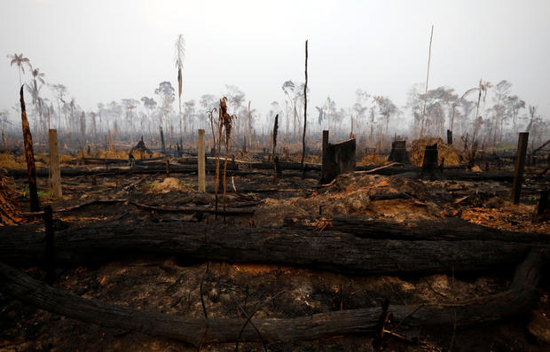 A tract of Amazon jungle is seen after a fire in Boca do Acre