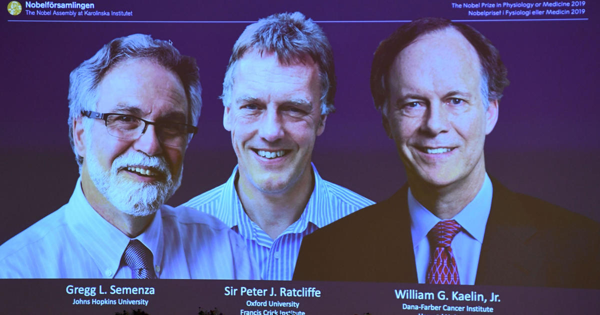 2 Americans among winners of 2019 Nobel Prize for medicine