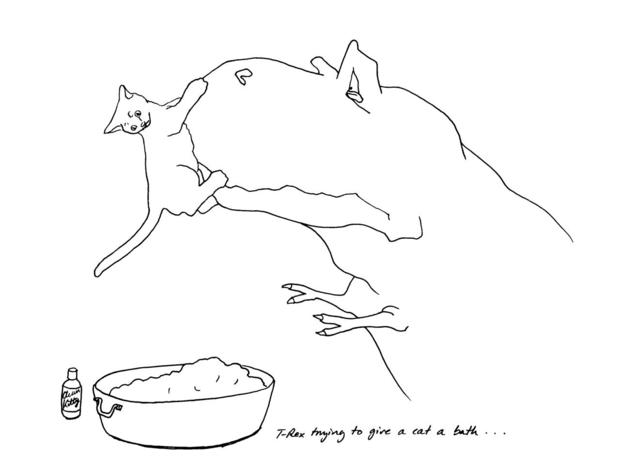 hugh-murphy-t-rex-cat-bath-74.jpg