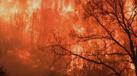 As California wildfires rage, is this the new normal?