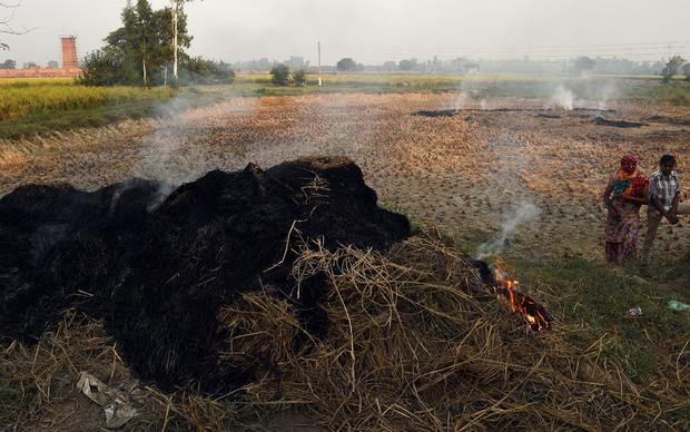 INDIA-ENVIRONMENT-POLLUTION-AGRICULTURE